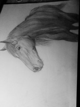 Horse // Traditional Art by they0ungart1st