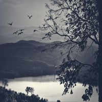 back to nature by arayo