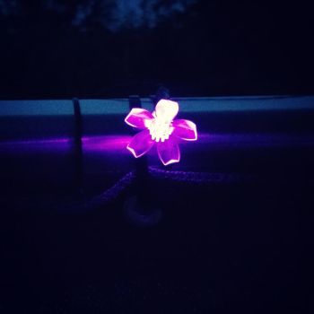Purple LED flower by BavarianGoassBeard