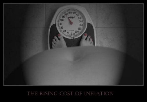 the rising cost of inflation by StuffedSkirt