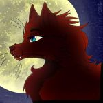 WolfCat by BlackFeather57
