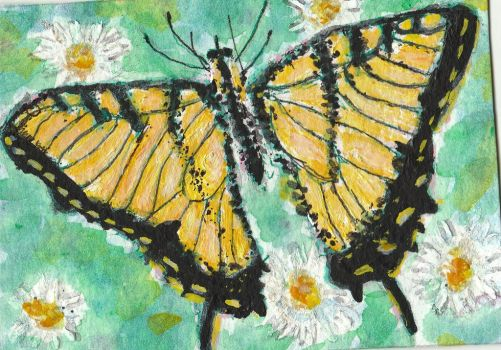 Yellow Butterfly  acrylic painting  aceo by tulipteardrops