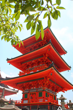 A temple in Kyoto by ShynessPhotography