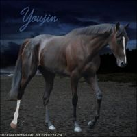 Horse Avatar ~Youjin by TheHorseAddict