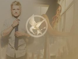 to the capitol... by ishadowhunter