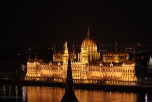 The Hungarian Parliament Building by terriblyWrong