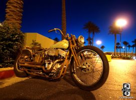 Ratty Bobber by Swanee3
