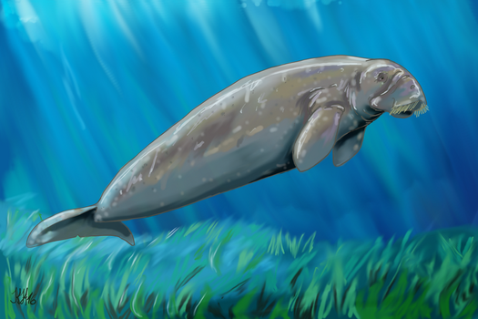 Prehistoric Dugong by Pelycosaur24