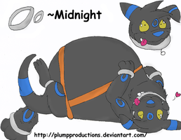 :New OC: Midnight the Umbreon: by PlumpProductions