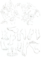 hands / feet study by Ithilloth