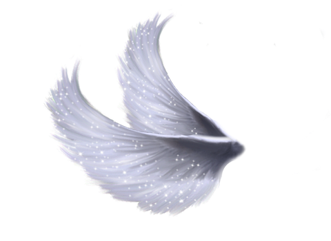 Wings Png 5 by Moonglowlilly