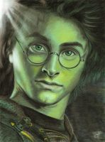 Harry Potter by Sassis