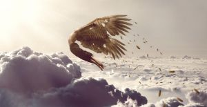 Glory of Icarus by ReyeD33