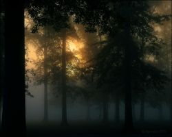 October Morn by bamako