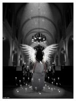 Immortalized Angel by countocram