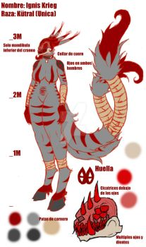 Referencia Ignis - Ref - Coomins by Ignis-Krieg