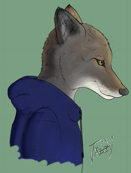 Mark's Coyote by woundedkneecap