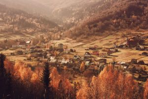 .The Valley. by cichutko
