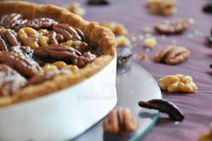 Pecan and nuts Pie by TigerQG