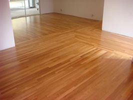 Timber-floor-staining by DallasBlack