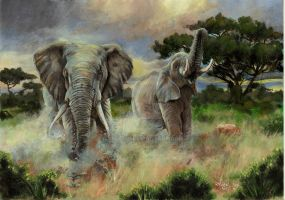 African Elephants by Sejafin
