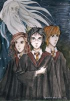 Harry, Ron and Hermione and Dumbledore by Mitsuukii