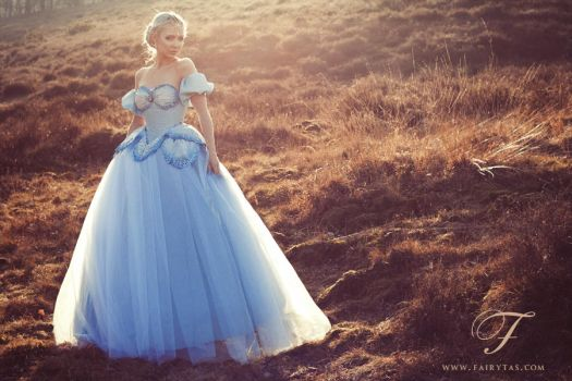 Blue Ball Gown by Fairytas