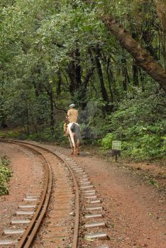 A parallel journey in Matheran by Sugumar