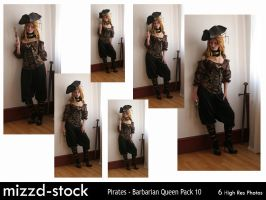 Pirates - Barbarian Queen Pack 10 by mizzd-stock