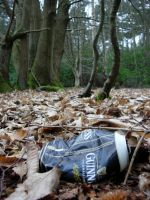Forested Guinness by asm495