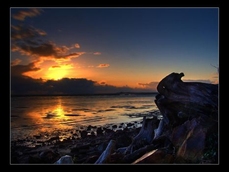 Solemn Sunset by AnonymousPhotography