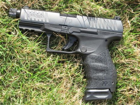 Walther PPQ M2 Navy (In Grass) by Xanionot