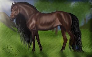 SSO Bay Morgan by VIP-EquineArt