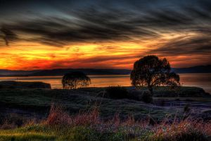 December in California by kory83