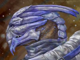 Turians Don't Like the Cold by MoonEcho
