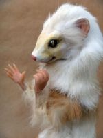 Ferret Room Guardian Face by AnyaBoz
