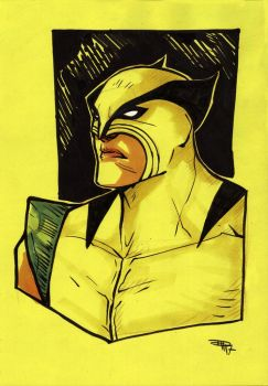 Classic Wolverine by DenisM79