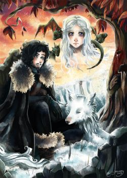 Ice, Fire And Blood by Simsamy130