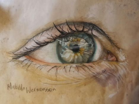 Eye study by Fisktoffla