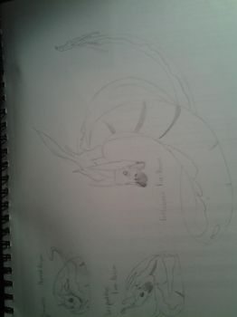 Here Have A Pokemon (NOT COLORED)(SIDEWAYS) by PrettyMuchNormal