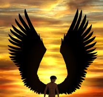 Wings of freedom by Naesagern