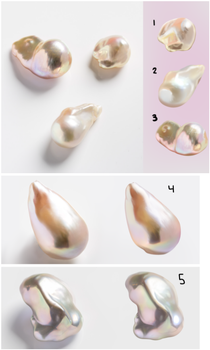 Photo studies - pearls by iPPG