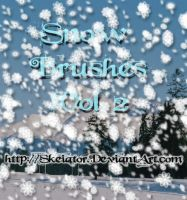 Snow Brushes Vol2 by SkeIator