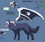 Ashs Ref for 08 by Ash-Dragon-wolf