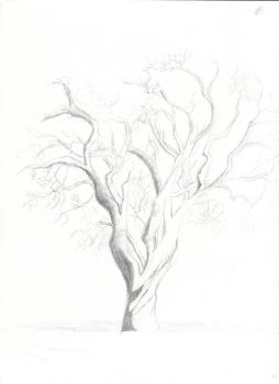 Lifeless Tree (WIP) by Pr0jectZer0