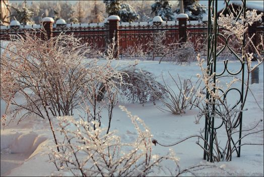 Icy winter 001. by LinAt