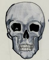 skull front detail with ink by Akaryuterra