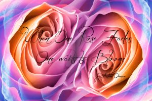 Infinity Rose Fx by OvahFxDigitalRealm